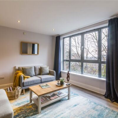 Grey sofa with large rug